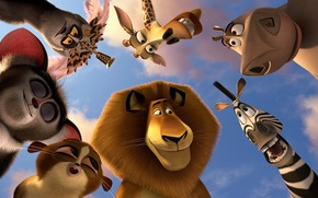 мультфильм, звери, животные, лев алекс, зебра марти, бегемот глория, жираф мелман, лемуры, король джулиан, морис, морт