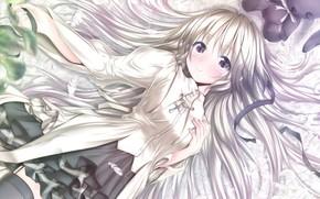 anime, ar relacionado, solido a dois, Kasugano, Sora, cabelos longos, cabelos grisalhos, cabelos brancos, vestir, X, sorrir, ver, brinquedo, coelho