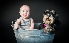 мальчик, собака, настроение