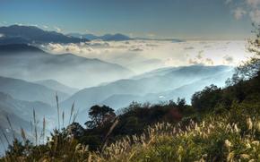 top, grass, fog, sky, Mountains