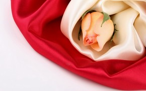 розы, шёлк, ткань, цветы, цветок, бутон, шелк