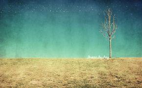 поле, дерево, текстура