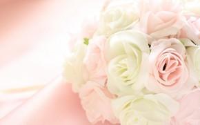цветы, ткань, бахрома, лепестки