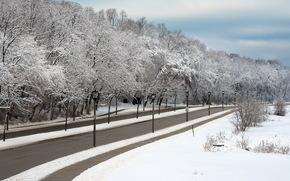 Winter, road, lights