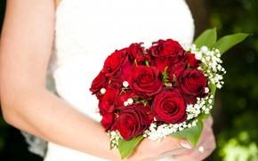 braccia, fiori, Roses, Bouquet da sposa