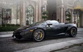 Lamborghini, Gaillarde, black, Lamborghini