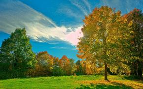 sky, Mountains, river, grass, tree