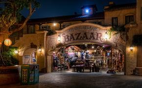 Stati Uniti d'America, California, Disneyland, strada, notte