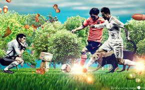 Ronaldo, Messi, Casillas, natura, hshamsi, situazione, fantasia, noccioline, ghiande