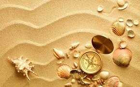 bussola, conchiglie, Lavello, sabbia