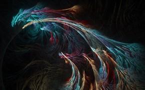 fractal, threads, color, background, dark
