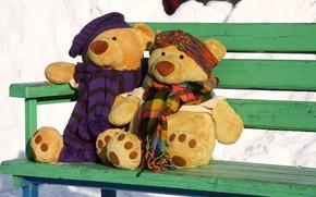 situazione, passeggiare, Bears, coppia, data, amore