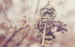 key, flower