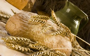 кувшин, хлеб, колосья