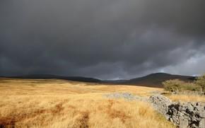 тучи, поле, кладка, камни, трава, сухая, радуга