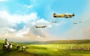 британские, самолеты, ВВС, в, небе, красивый, фон.