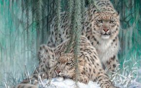 painting, snow leopard, ounce, Leopards, snow, Winter