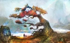 арт, дерево, мужчина, мальчик, туман