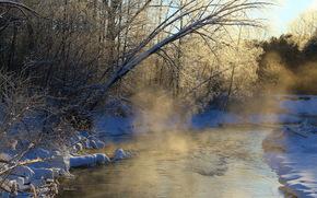 mattina, fiume, nebbia, inverno