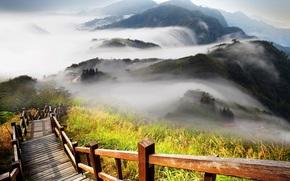 ladder, The hills, fog, railing