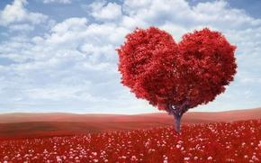 Walentynki, Mio, romans, serce, drzewo, green field, kwiaty, Niebo, chmury, Walentynki, mio, romans, serce, drzewo, zielone pola, kwiaty, niebo, chmury