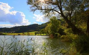 Река, Германия, Пейзаж, merfeld, Деревья