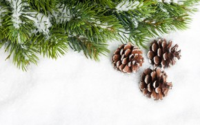 Cones, branch, needles, Tree, spruce, snow, New Year, Christmas, New Year