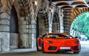 Lamborghini, aventador, orange, front view, reflection, black discs, Lamborghini