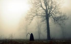 雾, 领域, 死亡