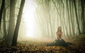 девушка, лес, туман, осень