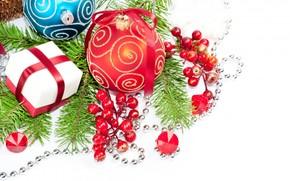 Balls, Berries, Tree, branch, box, New Year