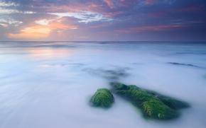 sea, coast, calm, stones, moss, evening, sunset, sky, clouds, clouds