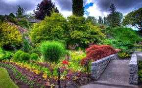 giardino, aiuole, traccia, paesaggio
