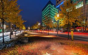 boulevard der stelle, Potsdamer Platz, Berlino, Boulevard stelle, Berlino, deutschland, Germania, citt, notte, autunno, fogliame, alberi, Panche, strada, estratto, edificio