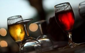 calici, vetro, bevande, liquido, Macro