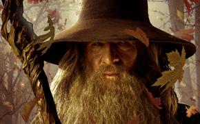 Lo Hobbit un viaggio inaspettato, Il Signore degli Anelli, Gandalf, saggio mago, personale, foglia di lettiera