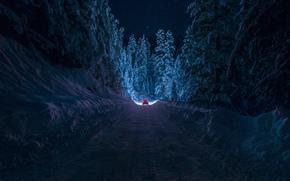 Bulgaria, Kyustendil, Winter, road, snow, forest, night, machine, light, sky, Star, by inhiu