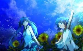 Art, girl, nature, Flowers, Sunflowers, sky, clouds, Trees, loli, girl, Star