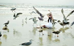 ragazza, Uccelli, situazione
