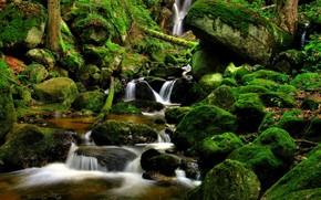 cascata, torrente, pietre, natura