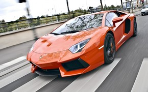 ламборгини, авентадор, дорога, скорость, пешеходный переход, Lamborghini