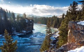 Montagne, foresta, alberi, fiume, corso, Canada, Canada