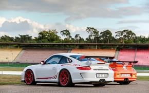 Porsche, pc, bianco, arancione, traccia, alberi, Porsche