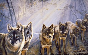 Art, picture, Wolves, flock, view, forest, light, rays, Trees, branch, leaves, animals