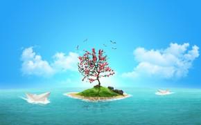 island, paper boats, Gulls, tree, stones