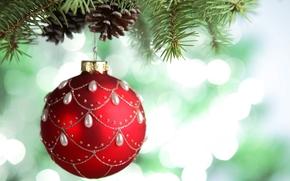 Capodanno, Natale, palla, palla, rosso, modelli, giocattolo, Albero di Natale, Natale, ramo, ramo, abete, Coni, Capodanno