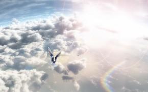 Arte, cielo, Uccelli, nuvole, sole