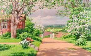 immagine, paesaggio, estate, loggia, finestra, dacia, giardino, traccia, recinto, portello, alberi, cespuglio, fiori, verdura, campo, villaggio