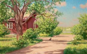 immagine, paesaggio, estate, casa, dacia, villaggio, traccia, alberi, cespuglio, fiume, Polli