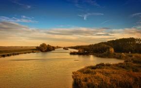 fiume, foresta, natura, ondulazione, nuvole